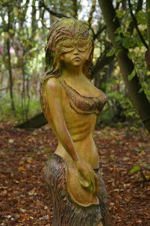Wood Nymph 1