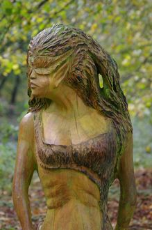 Wood Nymph 2