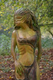 Wood Nymph 3